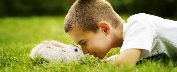 अपने खरगोश के साथ मज़ा आ रहा है