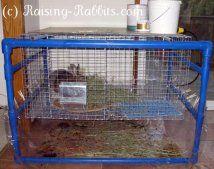 घर के अंदर खरगोश पिंजरों के लिए बहुत शांत पीवीसी फ्रेम